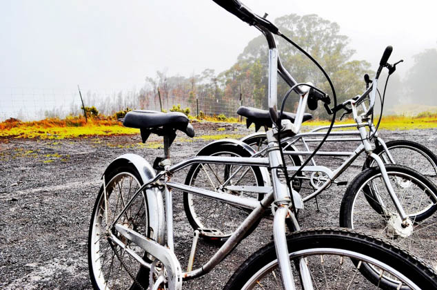 Get active on your next adventure and ride along