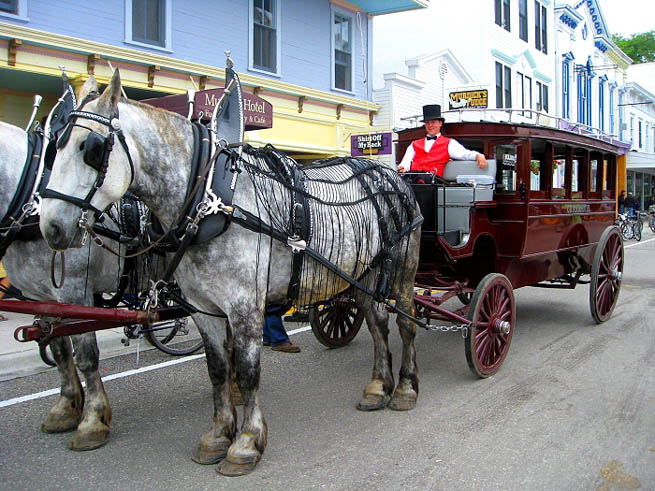 Mackinac Island is an island and resort area, covering 3.8 square miles in land area, in the U.S. state of Michigan.