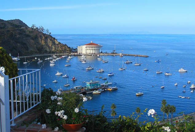 Get lost in a quiet bit of paradise easy to visit in Southern California - Catalina Island.
