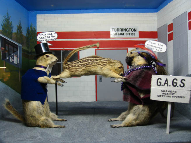 Torrington Gopher Hole Museum, located in Torrington, Alberta, features stuffed gophers posed to resemble townspeople.