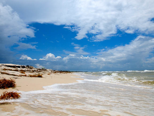 The Gulf Coast of the United States, sometimes referred to as the South Coast, or The Third Coast