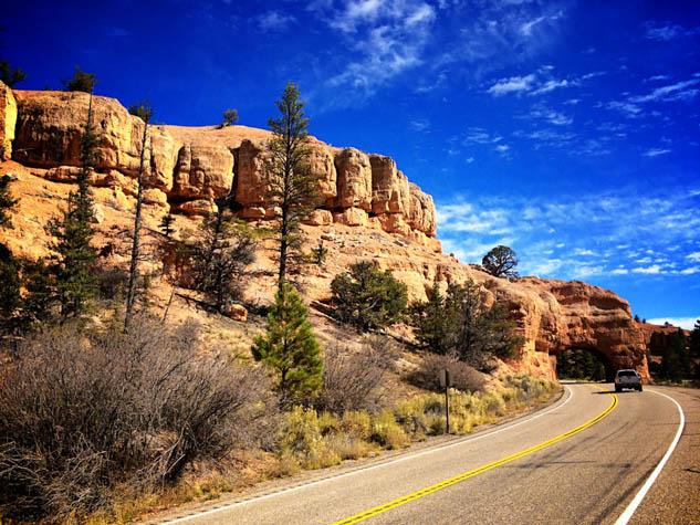 Don't let a long drive stress you out - pack these items for a pleasant family road trip.