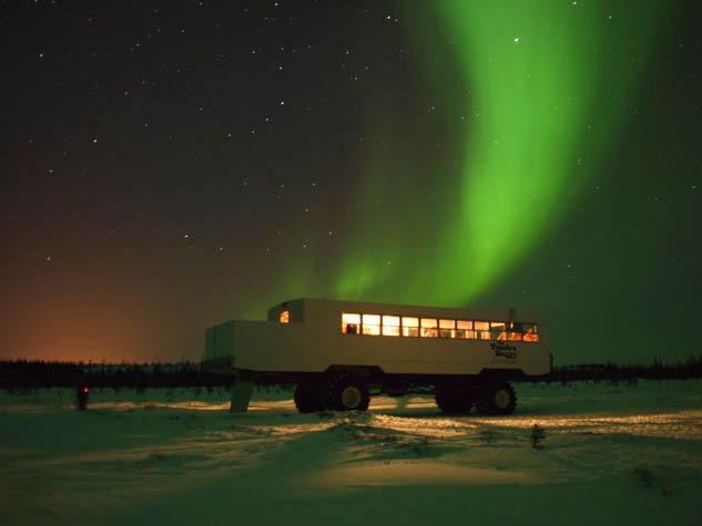 Let this post convince you that Churchill in Manitoba is an amazing place to visit.