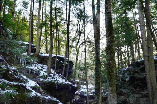Strap on your boots and tackle these great hikes in Ohio.