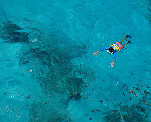 Snorkeling may not be for everyone, but with these tips you'll be taking to the water in no time!