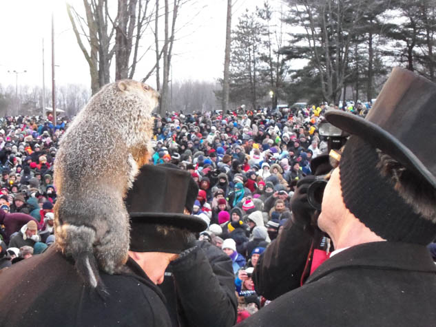 Experience an event unlike anything else in the world with this annual rodent celebration.