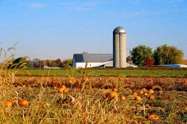 Plan the perfect fall getaway and visit any of these fun destinations.