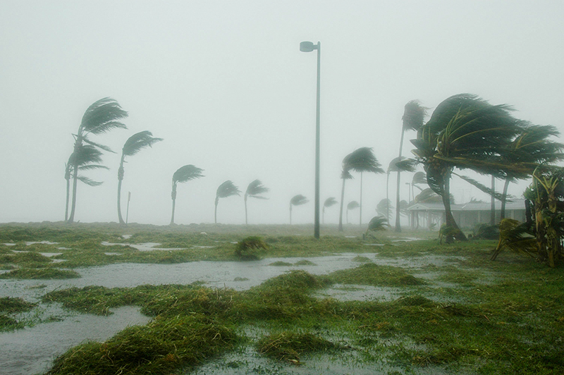 Make sure your travelers are protected during hurricane season.