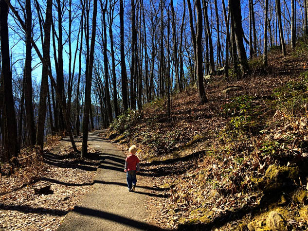Plan a hiking adventure that even the kids will be able to do in this beautiful national park.