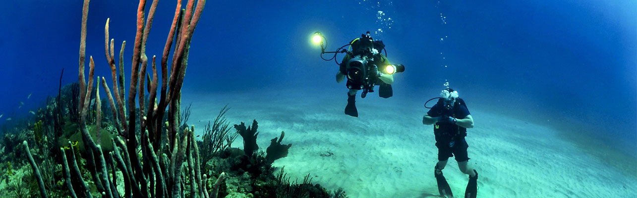 Make sure you have dive insurance for you next SCUBA vacation.