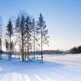 Whether you are looking to travel in the winter or Summer Finland has plenty of history and nature activities.